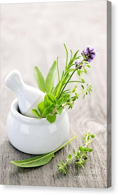 Mortar Canvas Print - Healing Herbs by Elena Elisseeva
