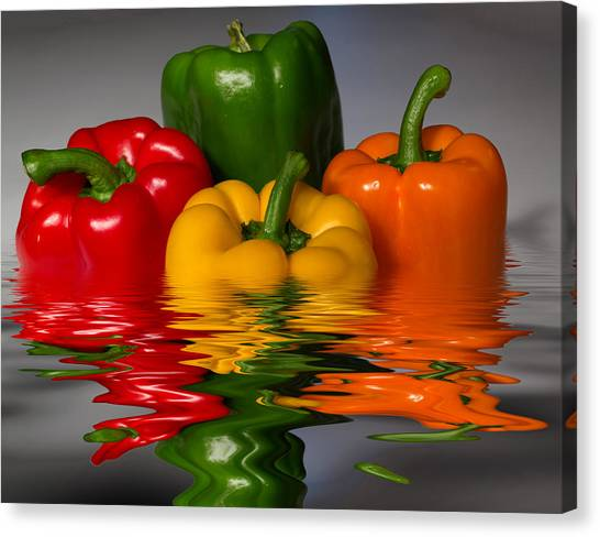 Healthy Reflections Canvas Print