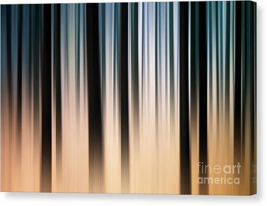 Treeline Canvas Print - Heardreds Hill by John Edwards