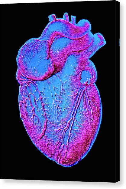 Heart Artwork Canvas Print by Alain Pol, Ism/science Photo Library