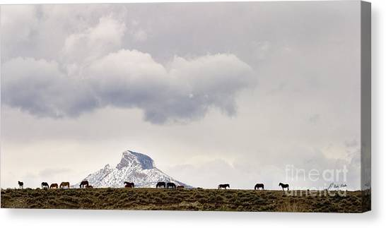 Heart Mountain Horses Canvas Print