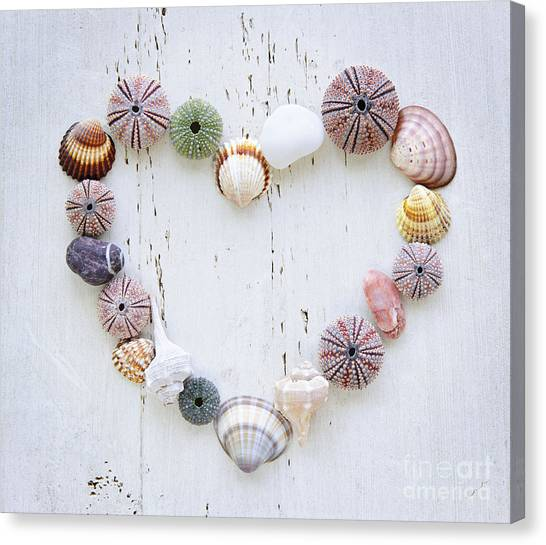 Heart Of Seashells And Rocks Canvas Print