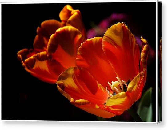 Heart Of The Flower Canvas Print