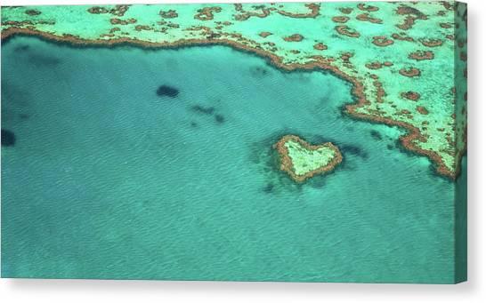 Heart Reef Canvas Print by Kokkai Ng