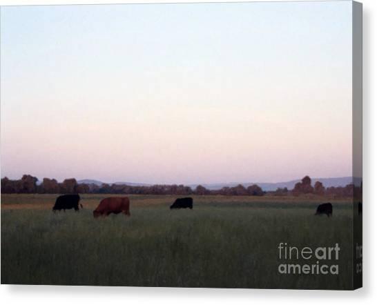 The Kittitas Valley I Canvas Print
