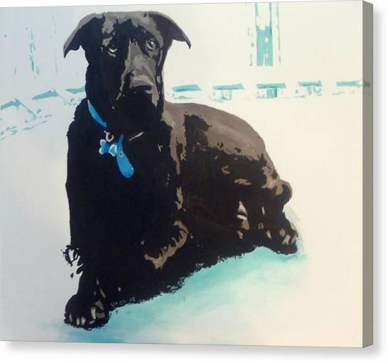 Heathers Dog Canvas Print