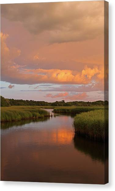 Marsh Grass Canvas Print - Heaven On Earth by Juergen Roth