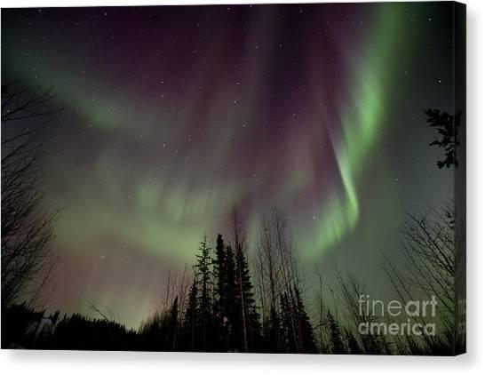 Yukon Canvas Print - Heavens Lights by Priska Wettstein