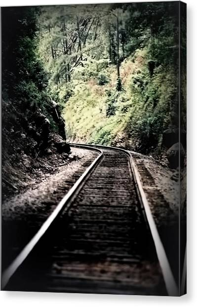 Hegia Burrow Railroad Tracks  Canvas Print