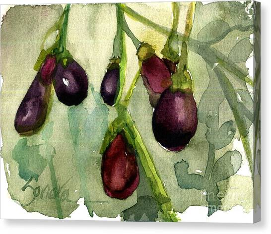 Heirloom Eggplant Canvas Print by Sandra Stone