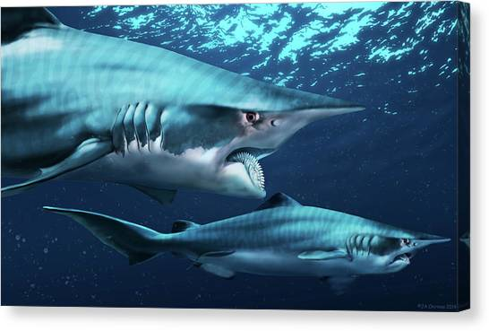 Shark Teeth Canvas Print - Helicoprion Prehistoric Shark by Jaime Chirinos