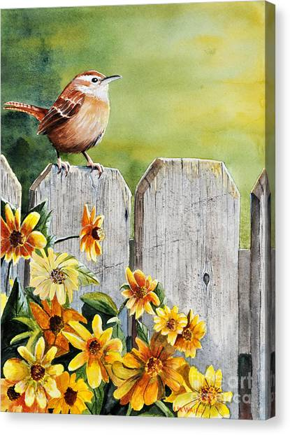 Wrens Canvas Print - Hello Morning by John W Walker