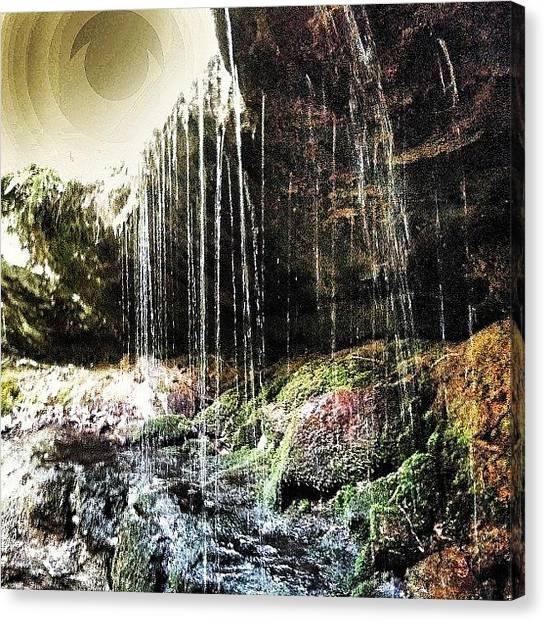 Backpacks Canvas Print - Hemlock Cliffs by Noel Pershinger