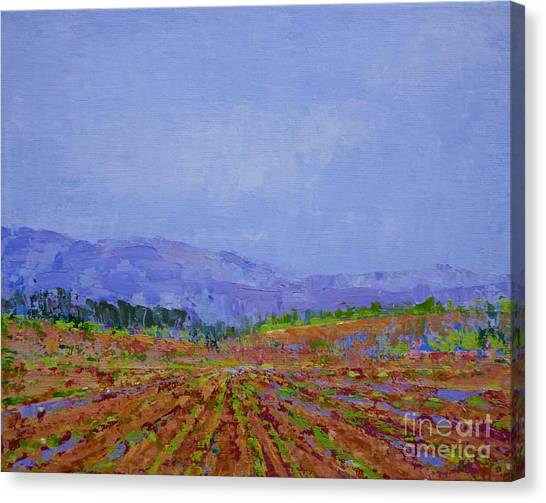 Henderson Farm Canvas Print