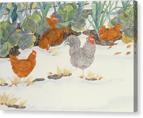 Chicken Canvas Print - Hens In The Vegetable Patch by Linda Benton