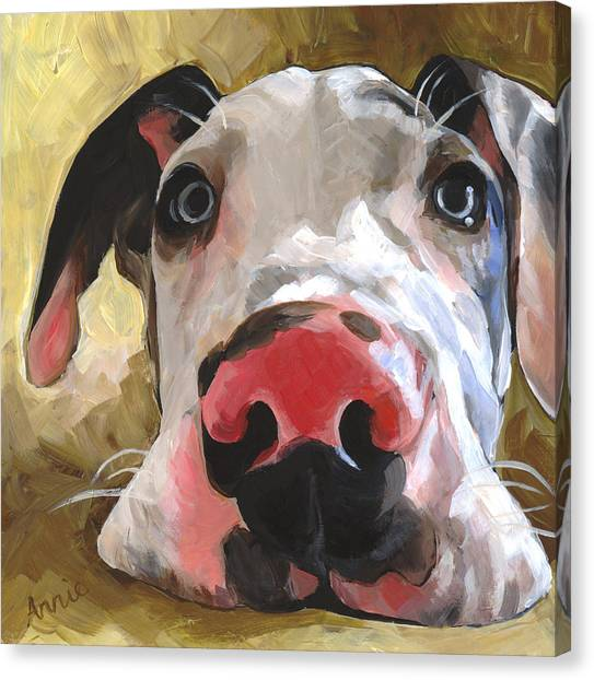 Great Danes Canvas Print - Herbie by Annie Salness