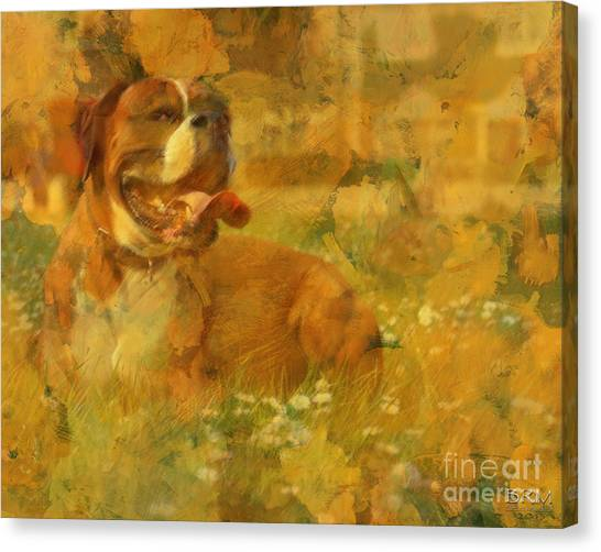 Here Doggie Canvas Print