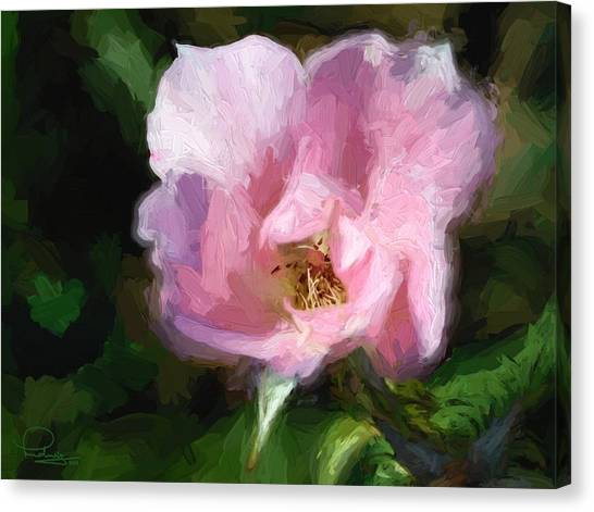 Heritage Rose Canvas Print