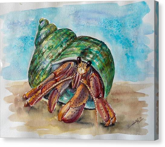 Hermit Crab 4 Canvas Print