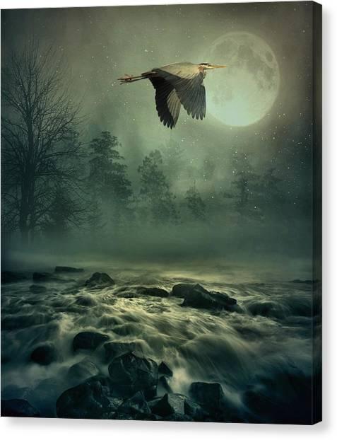 Heron By Moonlight Canvas Print