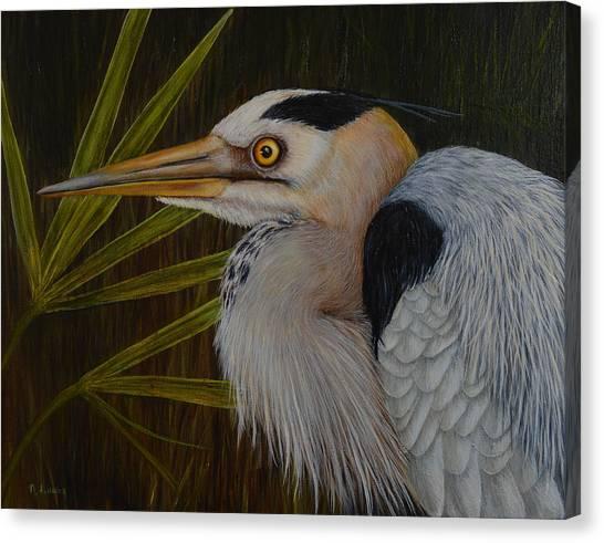 Heron In Hiding Canvas Print
