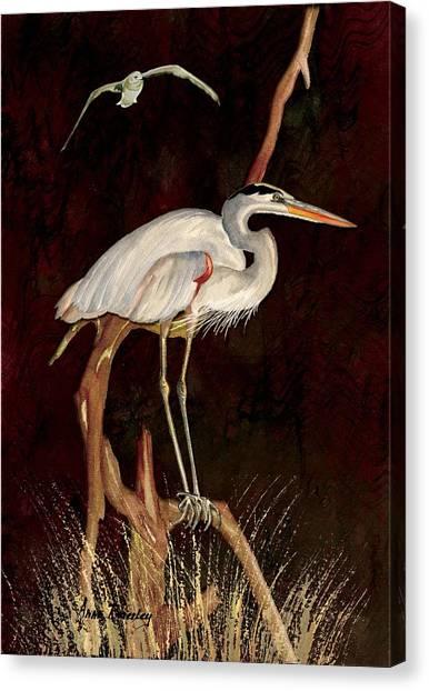 Heron In Tree Canvas Print