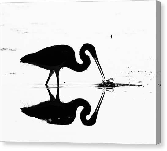 Heron Silhouette Canvas Print by Brian Magnier
