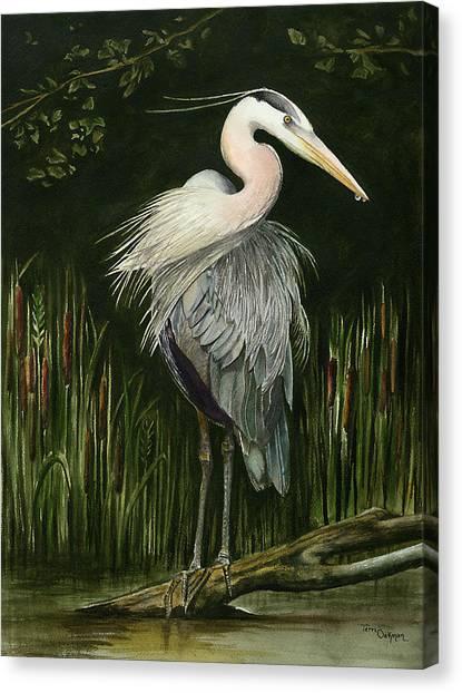 Heron Canvas Print by Terri  Meyer