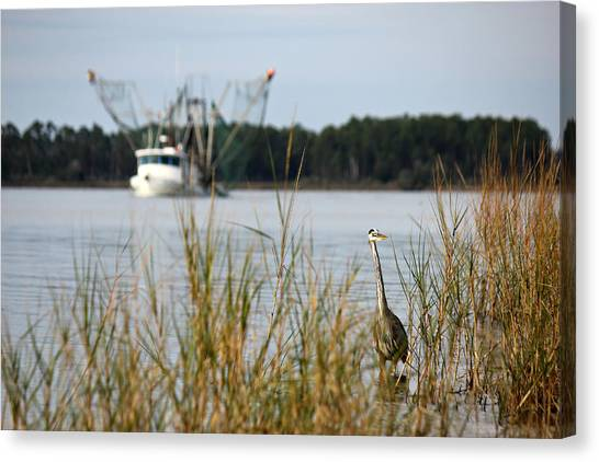 Heron Wading With Passing Shrimp Boat Canvas Print