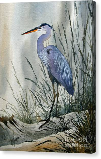 Avian Canvas Print - Herons Sheltered Retreat by James Williamson
