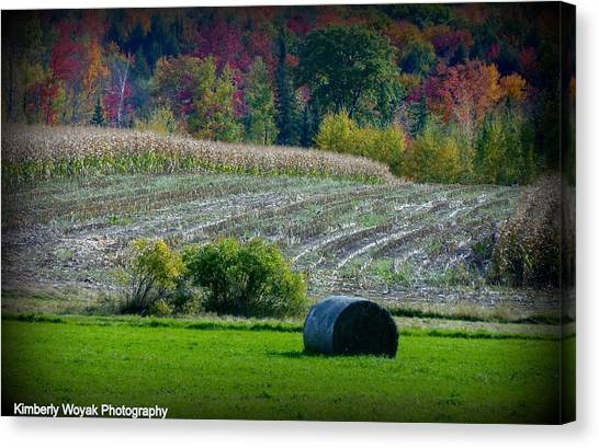 Hay Fall Canvas Print