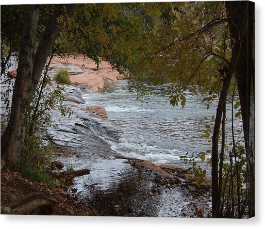 Hidden Brook Canvas Print by Judith Russell-Tooth