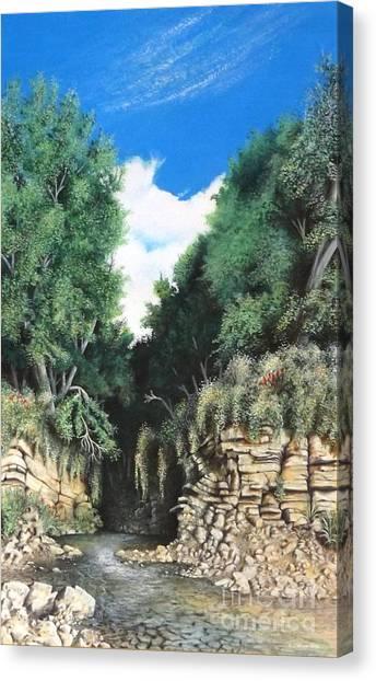 Hidden Canyon Canvas Print