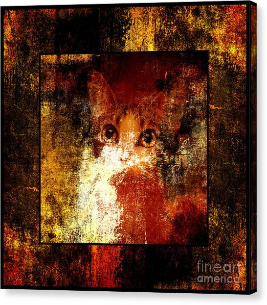 Andee Design Kittens Canvas Print - Hidden Square by Andee Design