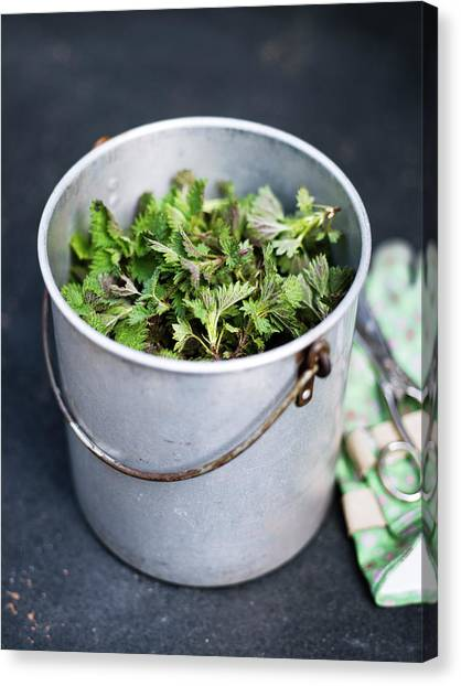 High Angle View Of Metal Bucket Full Of Canvas Print