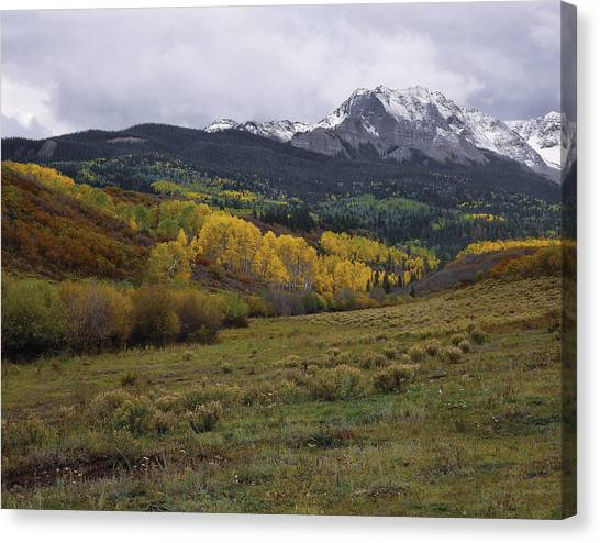 High Country Autumn Canvas Print