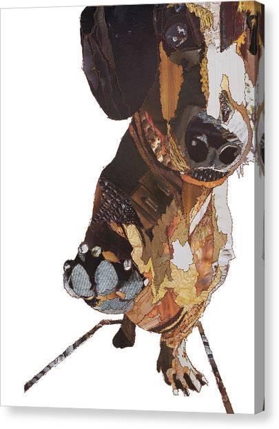 Dachshunds Canvas Print - High Five - Dachshund by Catherine Kleeli
