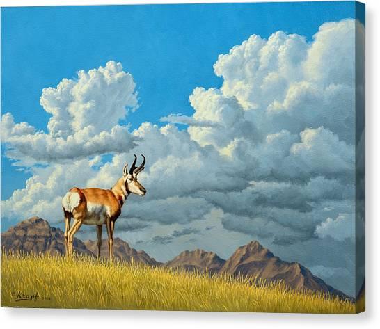 Cloudscape Canvas Print - High Meadow - Pronghorn by Paul Krapf