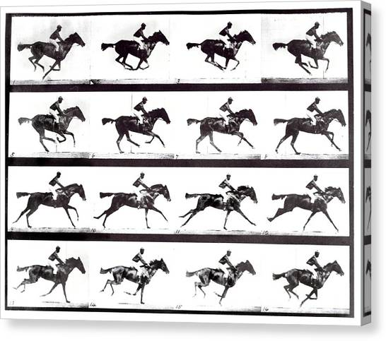 High-speed Sequence Of A Galloping Horse And Rider Canvas Print by Eadweard Muybridge Collection/ Kingston Museum/science Photo Library