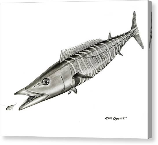 High Speed Wahoo Canvas Print