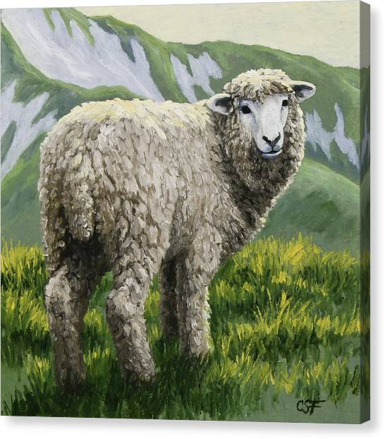 Sheep Canvas Print - Highland Ewe by Crista Forest