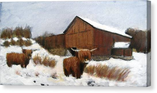 Highland Fling Canvas Print by David Zimmerman