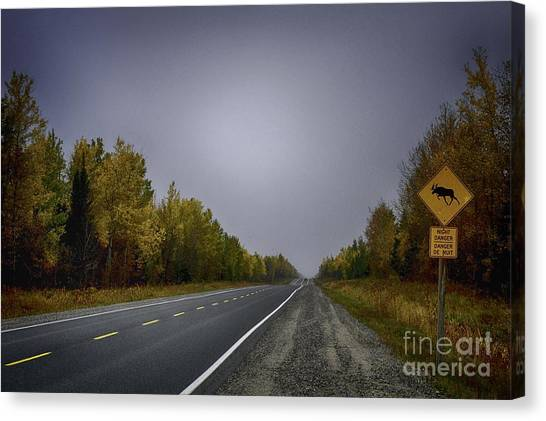 Highway Of Foliage Canvas Print by Richard W Lamoureux