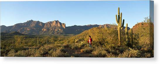 Backpacks Canvas Print - Hiker Standing On A Hill, Phoenix by Panoramic Images