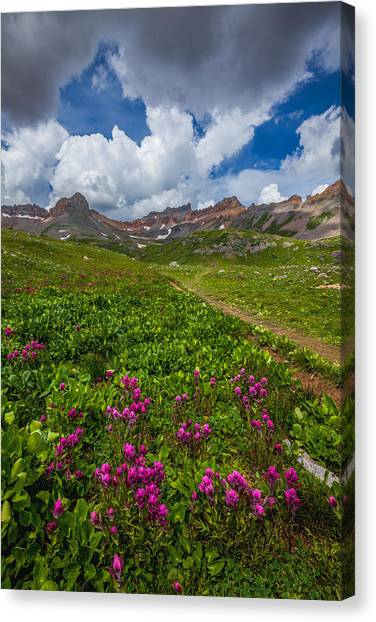 Clover Canvas Print - Hiking Ice Lake Basin by Darren  White
