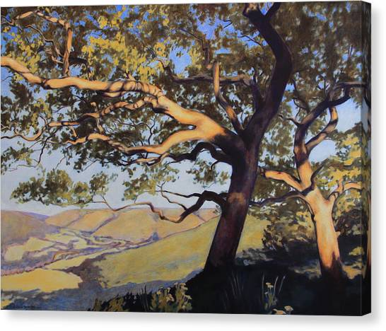Hill Country Canvas Print