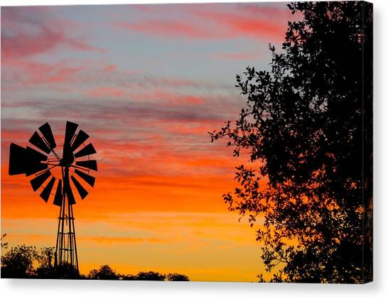 Hill Country Colors Canvas Print