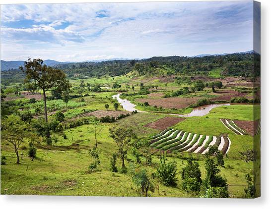 Deforestation Canvas Print - Hilly Landscape Of The Southern Ugandan by Martin Zwick