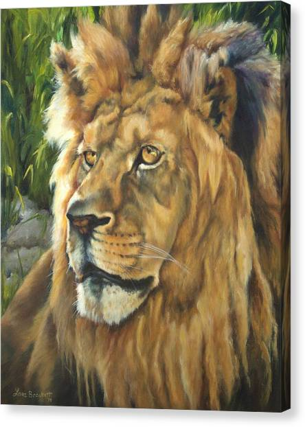 Him - Lion Canvas Print