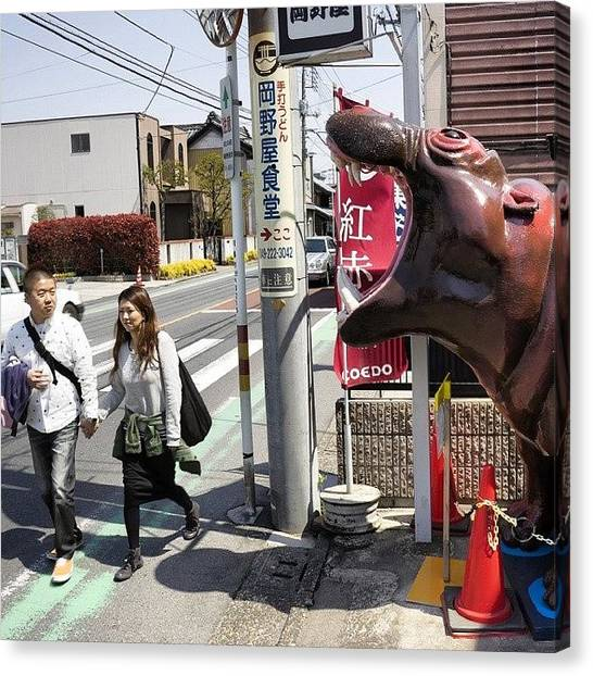 Hippos Canvas Print - Hippo Attack In Kawagoe. #kawagoe by For 91 Days Travel Blog